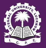 Fiesta 2018 integral university